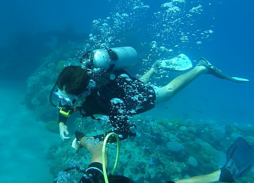 誰でも気軽にできる「体験ダイビング」