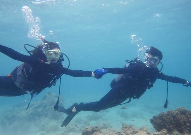 沖縄でファンダイブを楽しもう!「ナイト」ダイビング・「ビーチ」ダイビング・「ボート」ダイビングが体験できるバナナリーフ