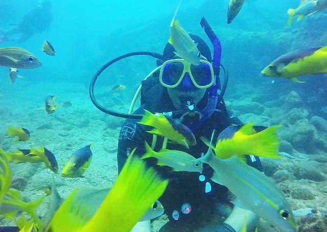 沖縄でダイビングやファンダイビングが体験できるバナナリーフ!「ボート」ダイビング・「ナイト」ダイビングなども